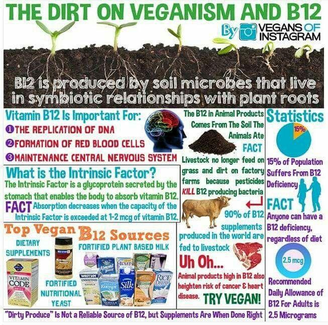 Veganism & B12