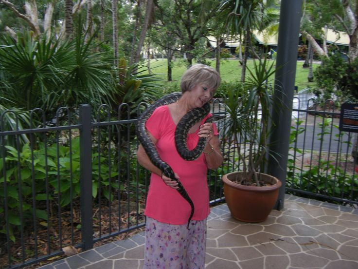 My love of snakes