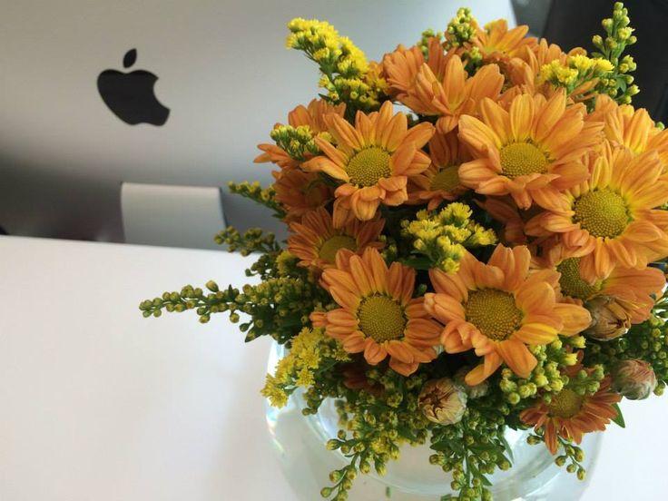 Chrysanthemums and solidago by ROSMARINO