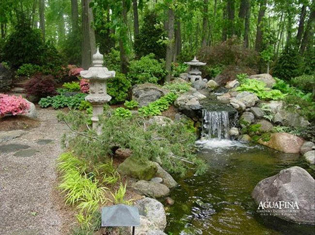 173 best Water Gardens Fancy images on Pinterest Landscaping