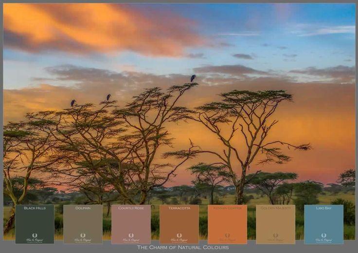 Afrikaanse zonsondergang
