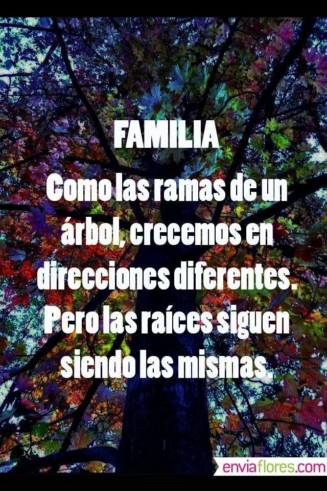 Familia... Como las ramas de un árbol, crecemos en direcciones diferentes. Pero las raíces siguen siendo las mismas.