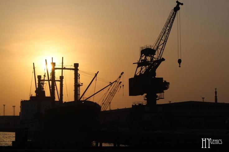 Port -harbor
