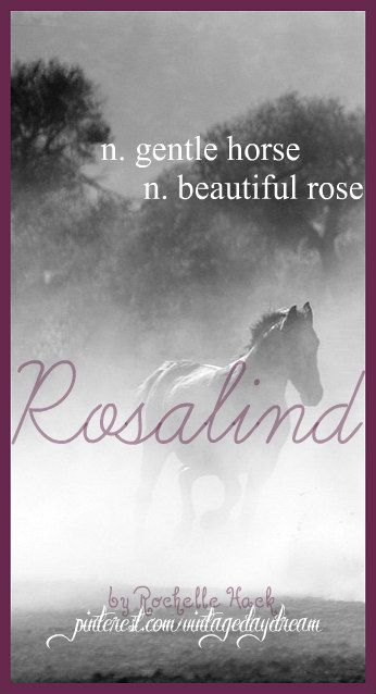 Baby Girl Name: Rosalind. Meaning: Gentle Horse; Beautiful Rose. Origin: Old German; Latin; Middle English. https://www.pinterest.com/vintagedaydream/baby-names/