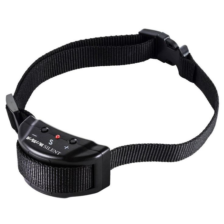 Best Shock Training Collar For Large Dogs
