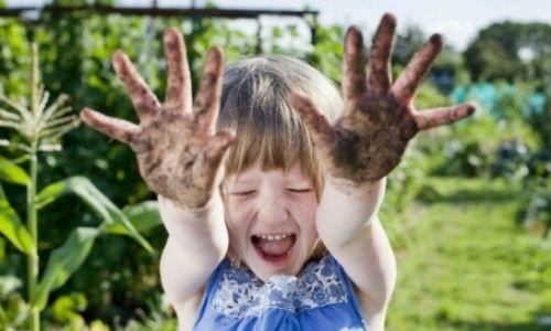 Çocuklara eğlence: avokado yetiştirmece