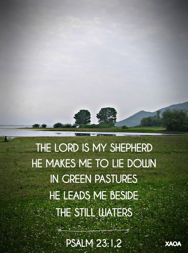 xaoa/''I am the good shepherd;and I know My sheep,and am known by My own.''JOHN 10:14