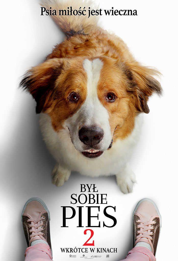Byl Sobie Pies 2 Caly Film Online Cda 2019 A Dog S Journey Dogs Beloved Dog