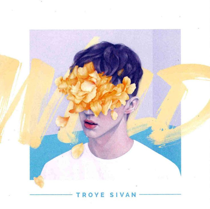 His fourth electro-pop EP and second major-label release, Troye Sivan's Wild offers more of the Australian's smooth, floaty vocal delivery and deliberate, atmospheric musical tenor. Among its six trac