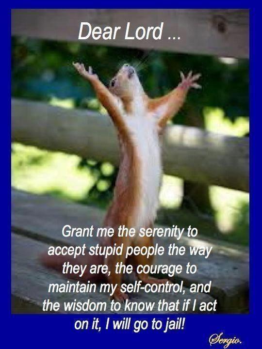 serenity to accept stupid people.... heh heh yep