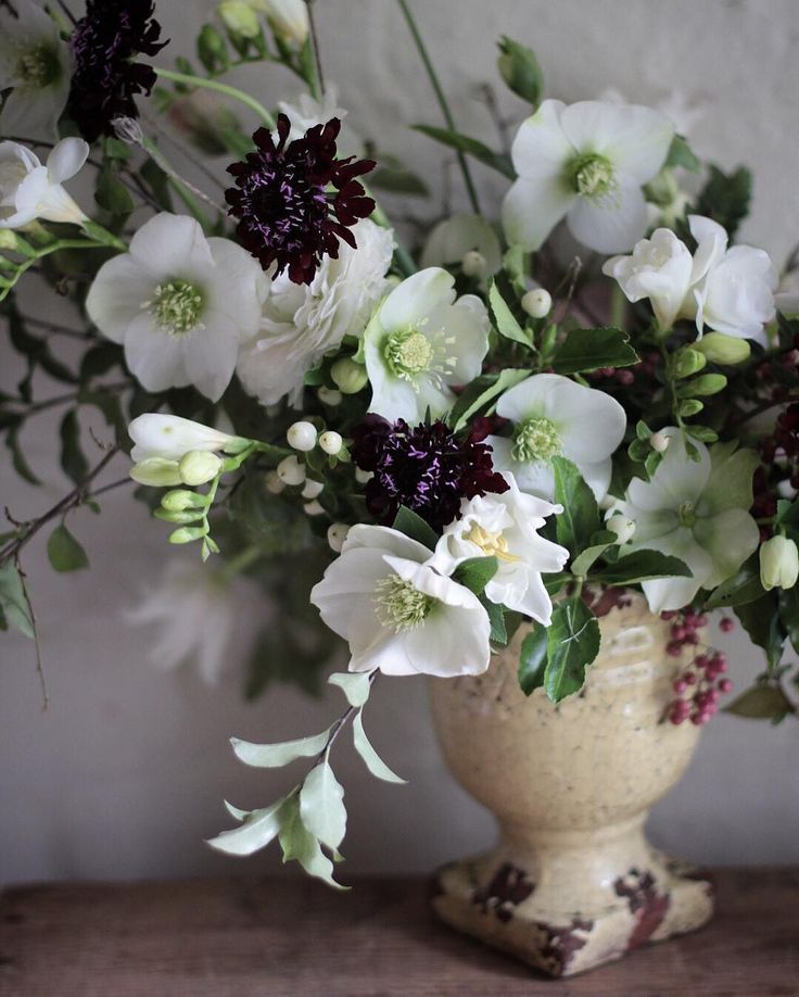 Lucky to have lovely Emma @aquietstyle at the studio today. A great day of flowering chatting and making a new friend. Oh and hellebores #hellebore #botanicalbrouhaha
