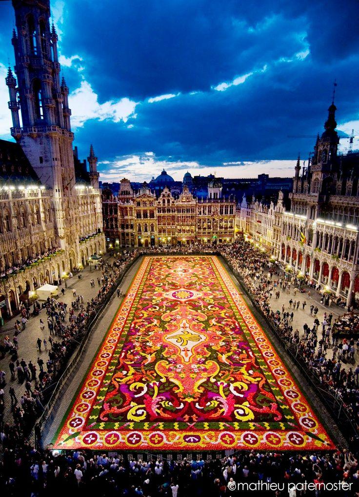 Flower Carpet, Brussels, Belgium