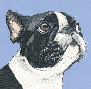 Illustrations and Custom Pet Portraits hand-painted in gouache on paper, a wonderful and unique gift for all occasions. More at www.artbymanda.com.