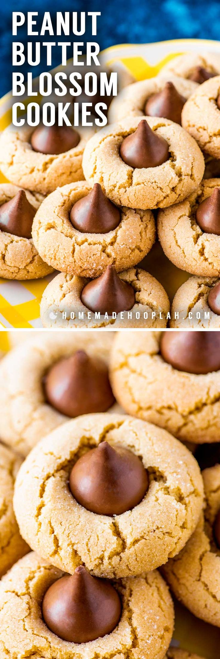 Peanut Butter Blossom Cookies! The ultimate cookie combination for chocolate and peanut butter lovers, these peanut butter blossoms are everything you remember from your childhood. They're perfect for holidays, parties, or gifts, and are always a hit at cookie exchanges. | HomemadeHooplah.com