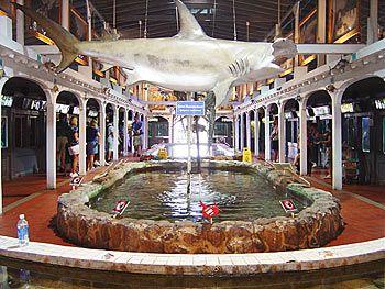 Key West Aquarium Favorite Places Spaces Pinterest