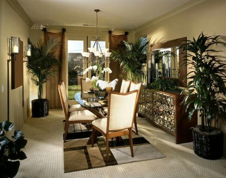 25+ Best Ideas About Blühende Zimmerpflanzen On Pinterest ... Bluhende Zimmerpflanzen Lichtbedarf