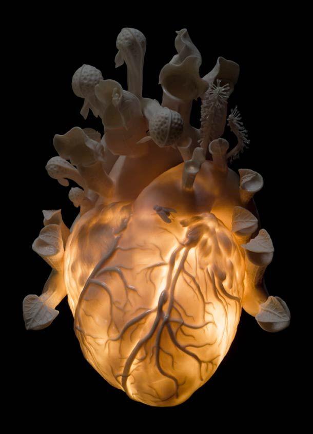 et depuis, mon coeur bat plus fort. Memento Mori – Superbes céramiques de Kate MacDowell (image)