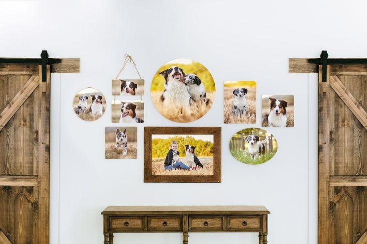 Idee von Raphaela Schiller Hundefotogra auf Fotoprodukte