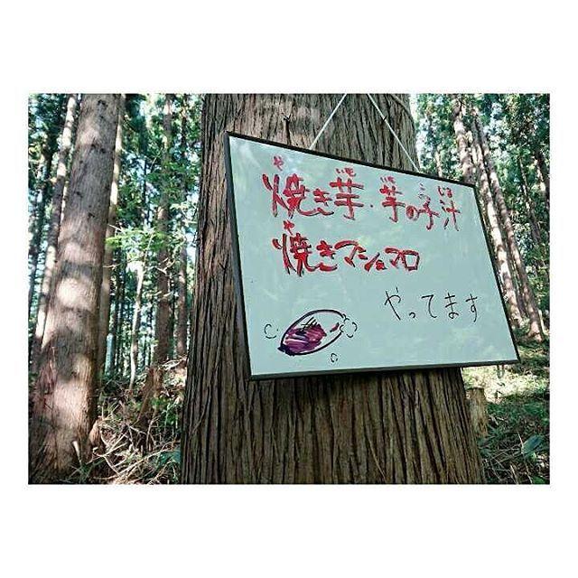 【akitacampusnet】さんのInstagramをピンしています。 《. 春に引き続き添川地区でのイベントに参加してきました🌰🍂🍁 . 私達キャンパネは、学生の森という団体としてマップリーディングなどの企画・運営を担当しました! 子供たちと一緒に自然と触れ合いながら楽しむことができました☺︎︎ . お母さんたちが作ってくださった芋の子汁、焼きいもや焼きマシュマロも美味しかった〜😋💕 . #1002 #秋田キャンパスネット#キャンパネ#学生#学生団体#団体#大学生 #秋田市#秋田#添川#自然#山#秋#森#芋の子汁#芋煮#焼きいも#焼きマシュマロ #nature#autumn#forest#🌳#🍃#🌰#🍂#🍁#🍄#🍠》