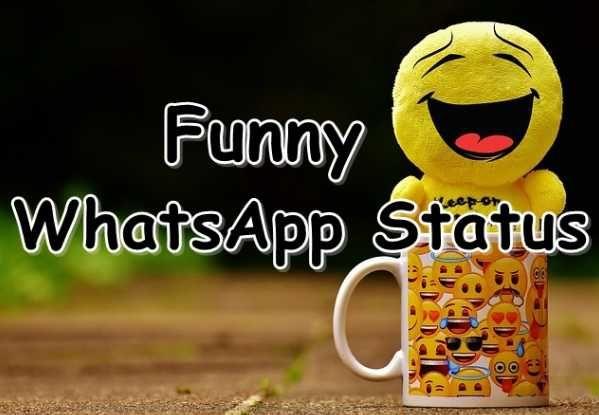 Funny Whatsapp Status Thumb Funny Whatsapp Status Funny Statuses Whatsapp Status Quotes