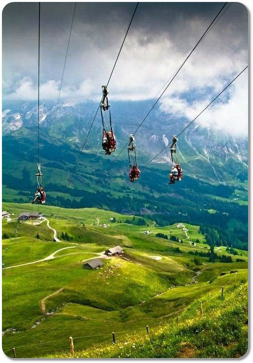 Ziplining in Switzerland, Grindelwald. The best places to visit in switzerland summer time.