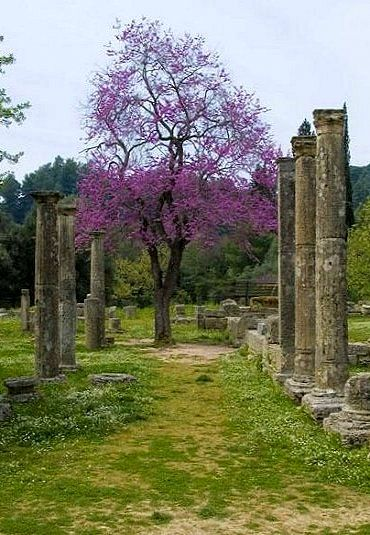Ancient Olympia in spring (Peloponnese), Greece