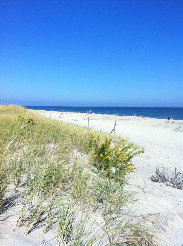 My Mom spent summers on this beach many years ago!   Nauset Beach, Cape Cod