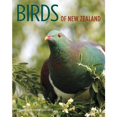 Birds of New Zealand Calendar 2016