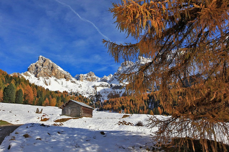 What a wonderful world - #dolomites #valdifassa