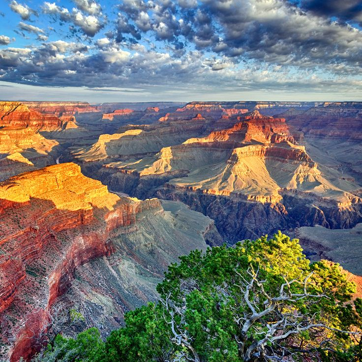 10 Things to See and Do in Grand Canyon National Park
