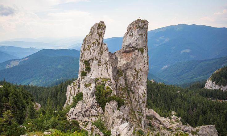 Rarau mountain - Carpathian Mountains Bucovina - Romania