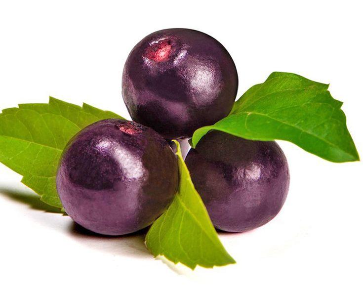 マキベリー 効能・効果と食べ方 | スーパーフード《Super Foods》どこよりも高い抗酸化値のスーパーフード「マキベリー」。濃い紫色のもととなっている強い抗酸化物質のアントシアニンをはじめとするポリフェノールが含まれ、スーパーフードの中でもひときわ高い抗酸化値を誇るので免疫力の増進が期待できます。また、美肌効果や生活習慣病予防、便秘改善効果の成分も含まれています。