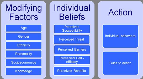The health promotion model illustrates how health-related behaviors and beliefs promote health.