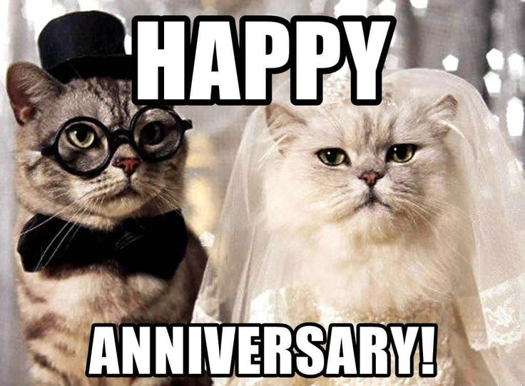 Wedding Anniversary Meme For Wife, Husband and Loved Ones