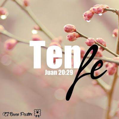Juan 20:29 Jesús le dijo: Porque me has visto, Tomás, creíste; bienaventurados los que no vieron, y creyeron.♔