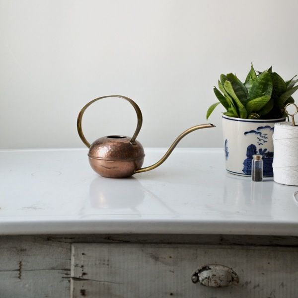 We just couldn't resist the perfect patina on this vintage copper and brass watering can. Ideal for watering those hard to reach indoor plants. Limited availability.***vintage items are used and have slight wear and a natural patina***