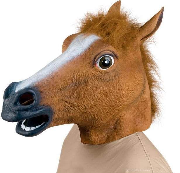 Costume da cavallo, il trend degli ultimi anni