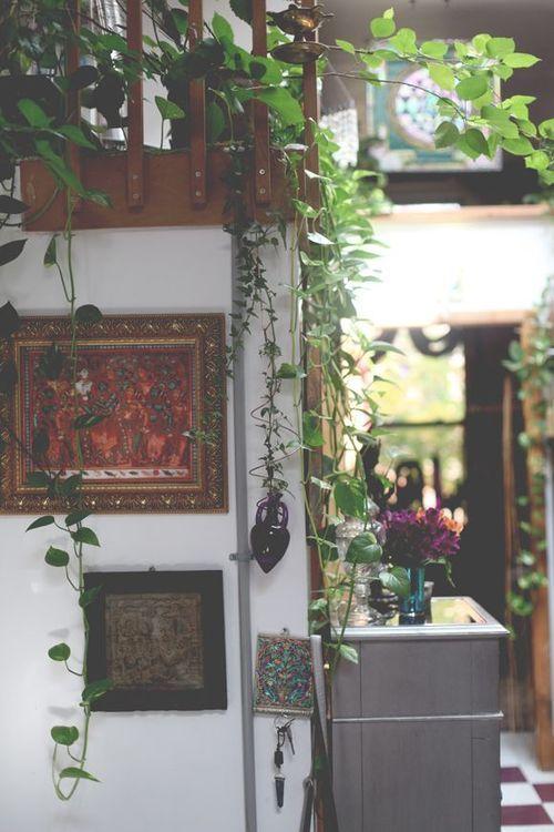 frommoon2moon:  Lotus temple Yoga