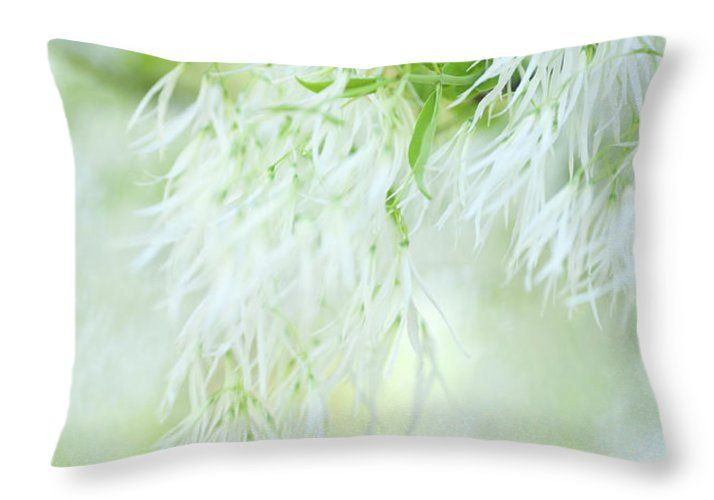 Jenny Rainbow Fine Art Photography Throw Pillow featuring the photograph White Fringetree In Springtime by Jenny Rainbow
