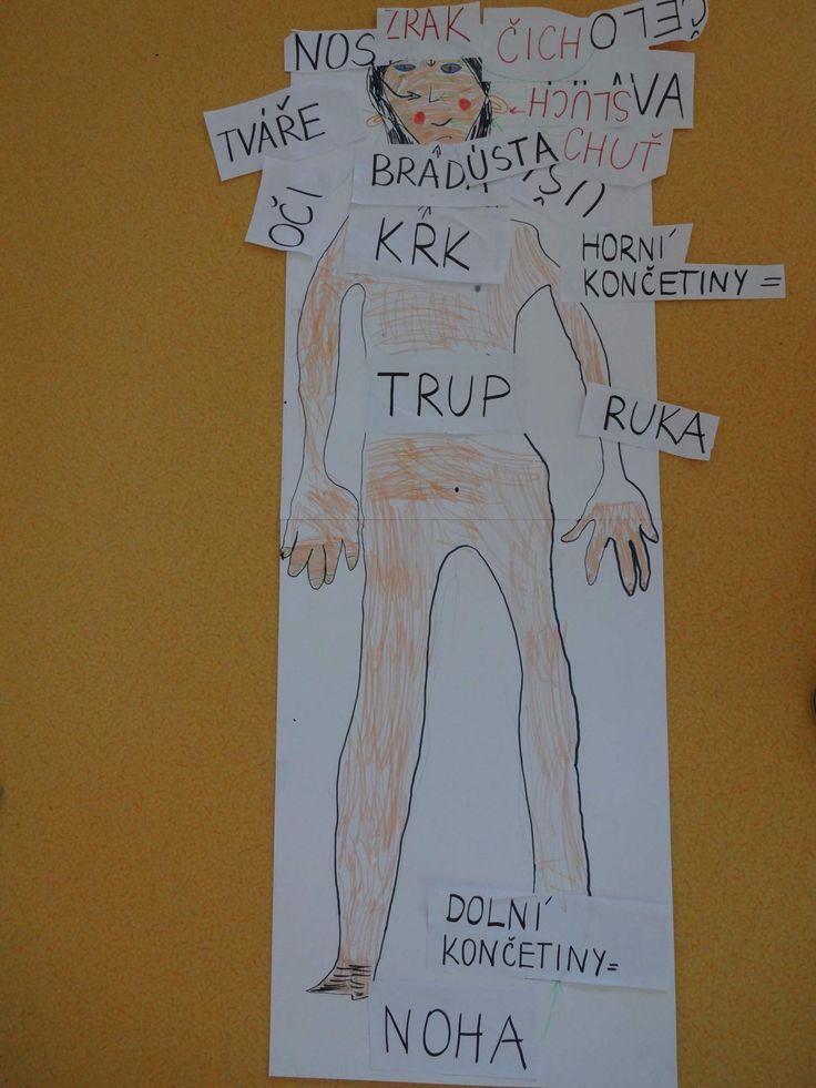naše tělo