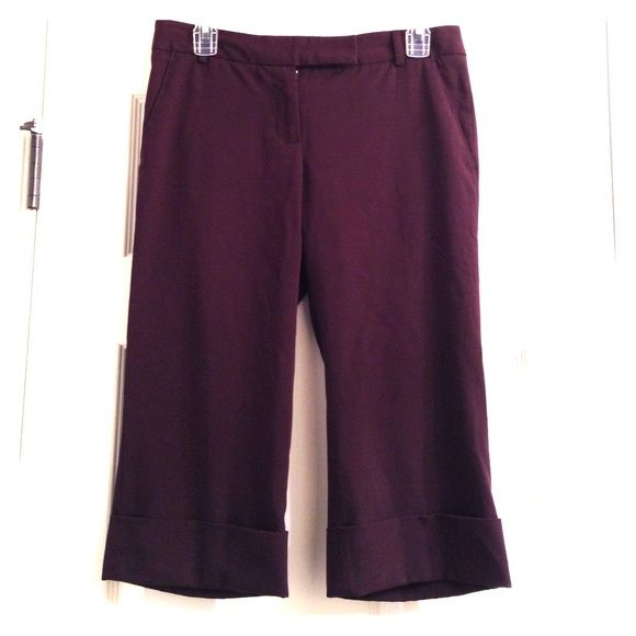 Daisy Fuentes Capris Daisy Fuentes Capris. Dressy. Brown. Great for work. Faux front pockets. Petite. End below knee. Daisy Fuentes Pants Capris