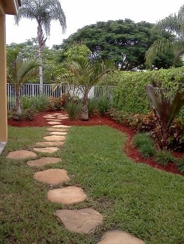 61 best subtropical gardens plants images on pinterest