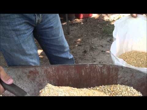 HOW TO MAKE YOUR OWN PIG FEED Formula - Best Quality Feed for LESS - YouTube