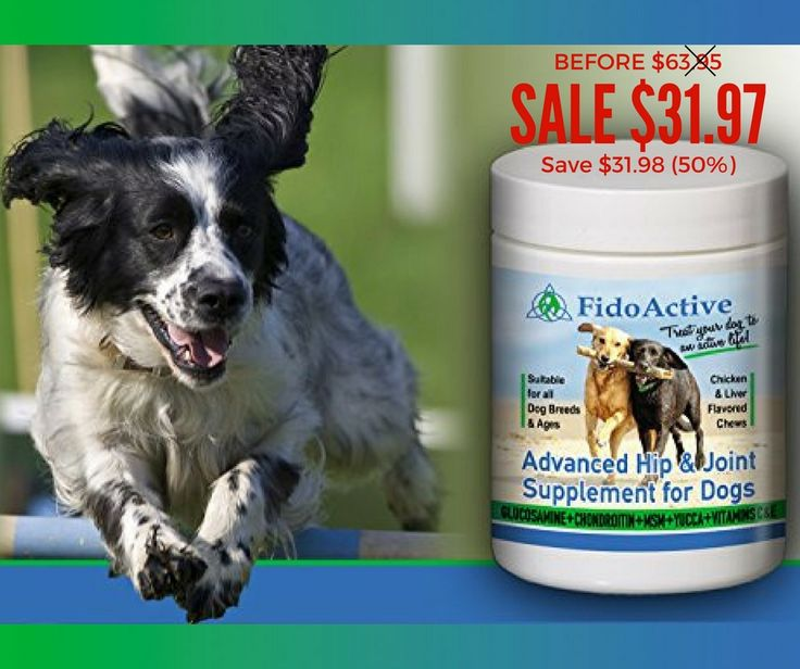 Make Your Dog's Life Happy & Healthy!!!  #healthydogs #dogsupplements #happydogs #happyowners #welovedogs #hipjointsupplement  Amazing offer awaits you!!!  Order now:https://www.amazon.com/Supplement-Glucosamine-Chondroitin-200-Count-Heart-Shaped/dp/B00V3C2BJ2/