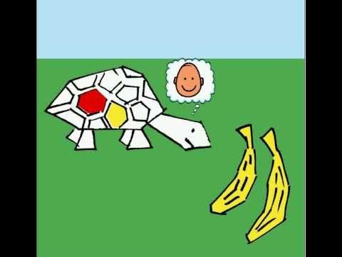 Schildpad wil een kleurtje