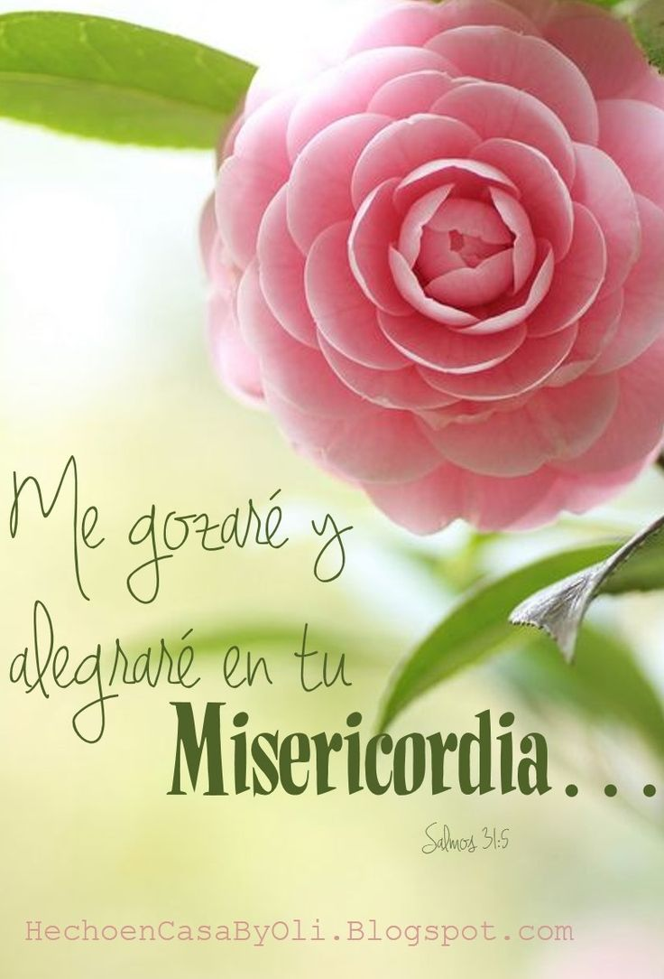 http://hechoencasabyoli.blogspot.com