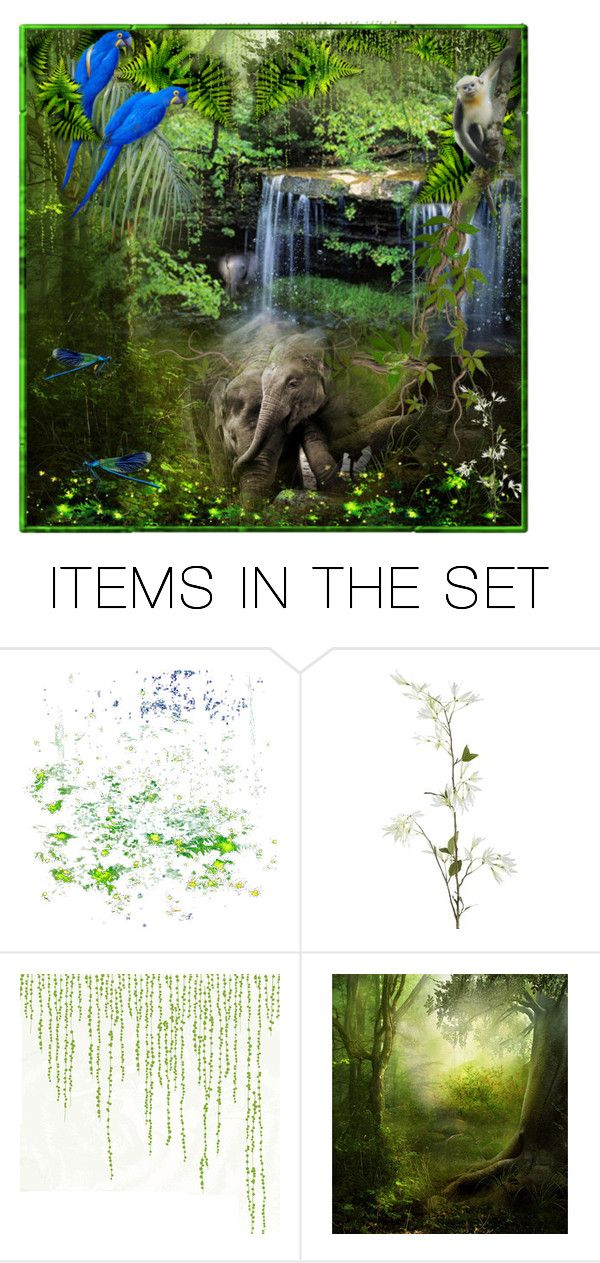"""""""Rain forest♡"""" by califorina-girl ❤ liked on Polyvore featuring art"""