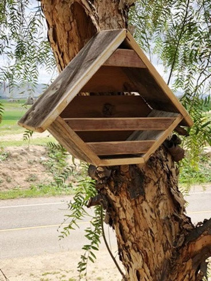 Small dove nesting box Etsy (With images) Nesting box