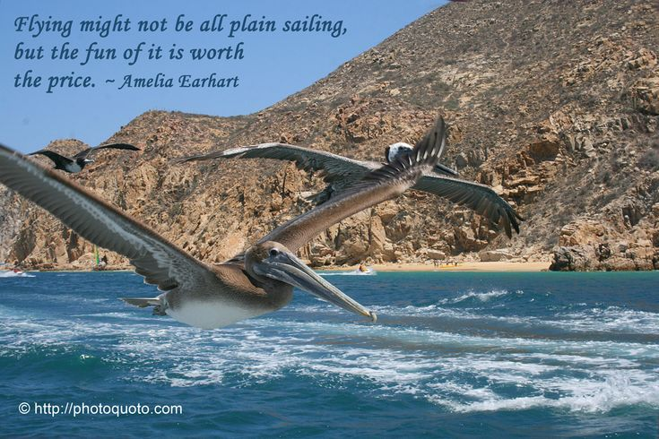 92 Best Sailing Quotes Images On Pinterest: Best 25+ Nautical Quotes Ideas On Pinterest