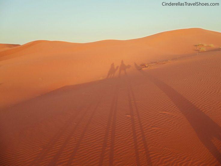 We in Camel Caravan in Sahara Desert, Morocco